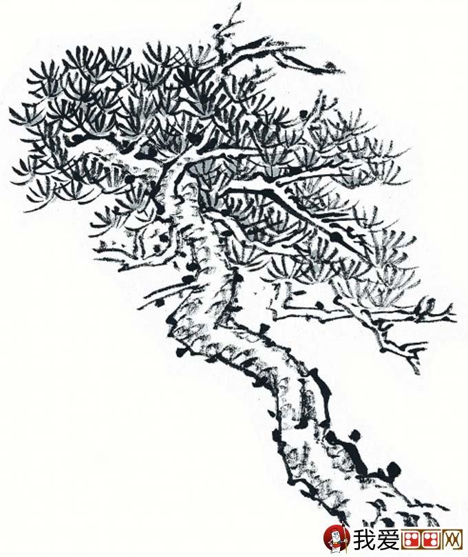 国画松树的画法:松柏松树水墨画图片大全11