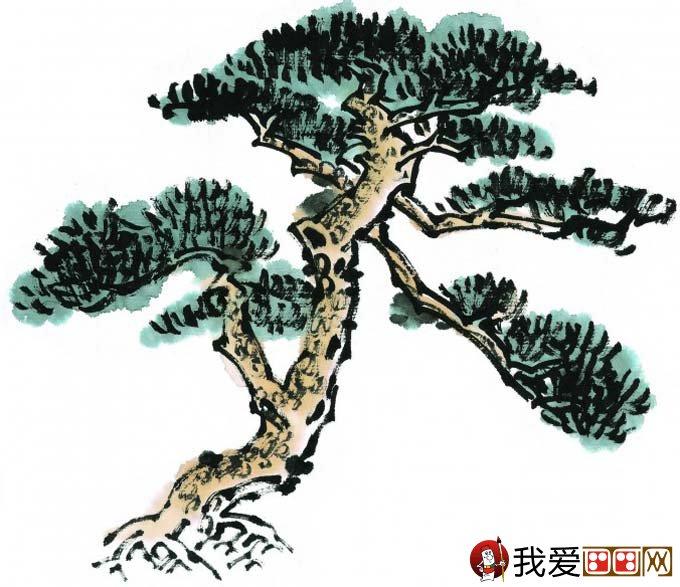 国画松树的画法:松柏松树水墨画图片大全之设色篇58
