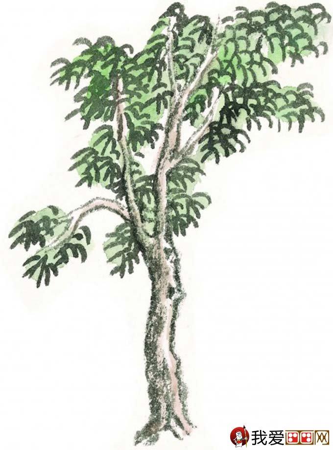 国画松树的画法:松柏松树水墨画图片大全69p之设色篇(17)