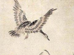 朱耷作品大全,八大山人花鸟画作品117副(三)