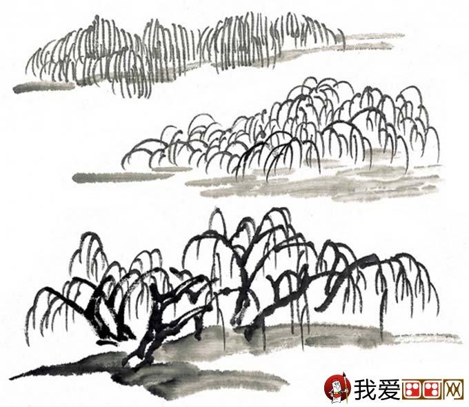 水墨画柳树图片13P 各种国画杨柳的国画水墨画法 2