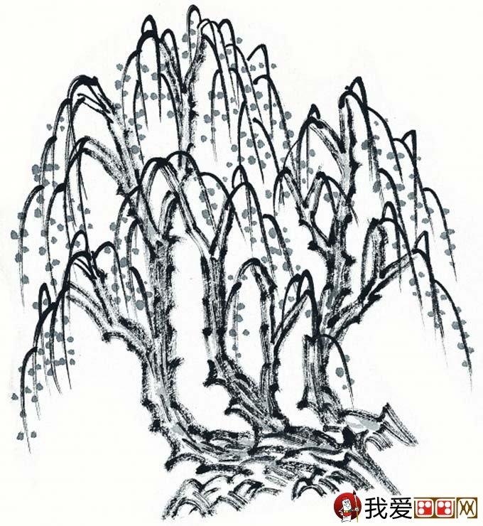 水墨画柳树图片13P 各种国画杨柳的国画水墨画法 5图片