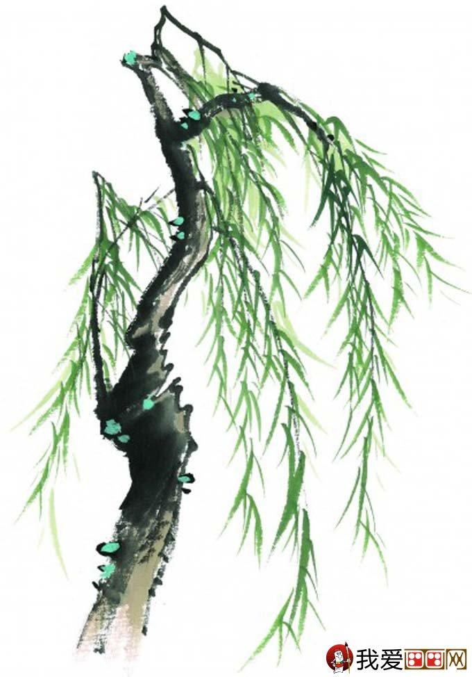 水墨画柳树图片13P 各种国画杨柳的国画水墨画法 6图片