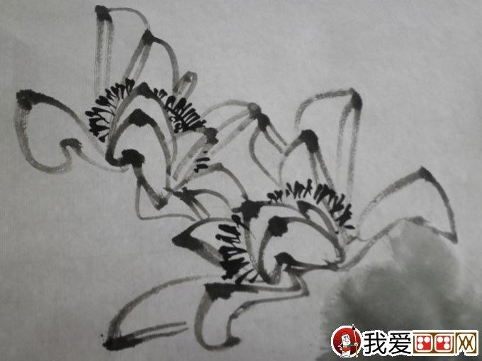 大写意水墨荷花画法 大写意荷花的绘画教程图文步骤(3图片