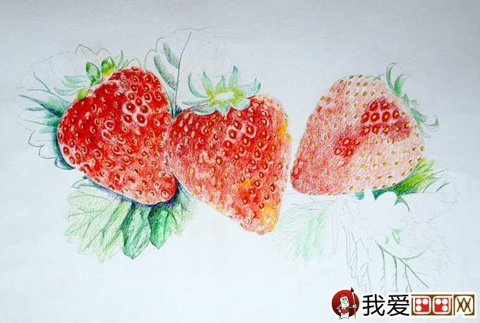 超写实草莓彩色铅笔画教程 逼真的草莓画法图文步骤 2