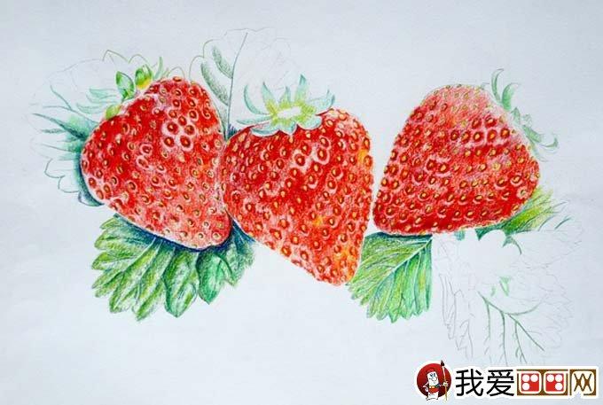 超写实草莓彩色铅笔画教程:逼真的草莓画法图文步骤(3