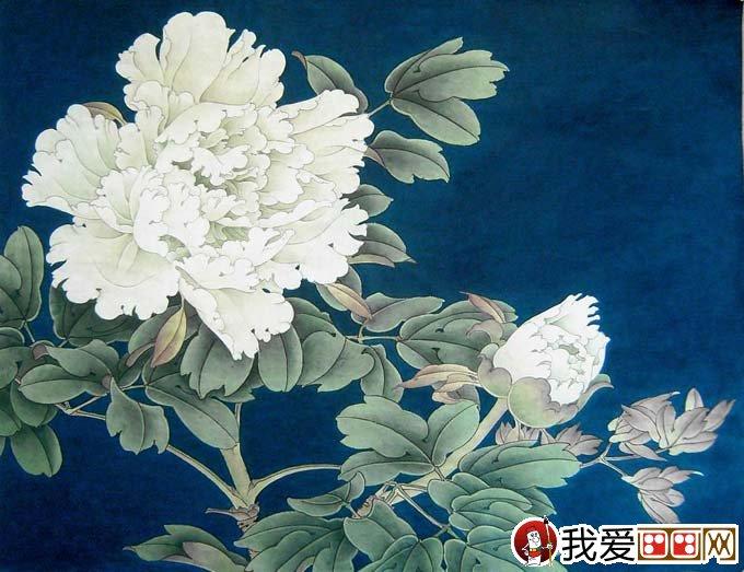 李晓明工笔白牡丹设色绘画教程步骤05