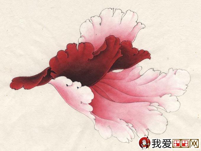 牡丹花二乔花瓣绘画教程-李晓明工笔牡丹 杨妃醉酒 绘制步骤 肌理制图片