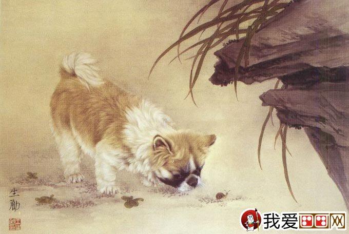 国画工笔狗的画法