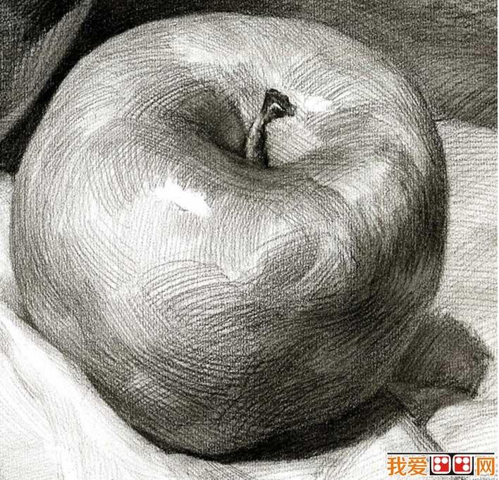 单个水果素描静物 5个不同角度的素描苹果图片图片