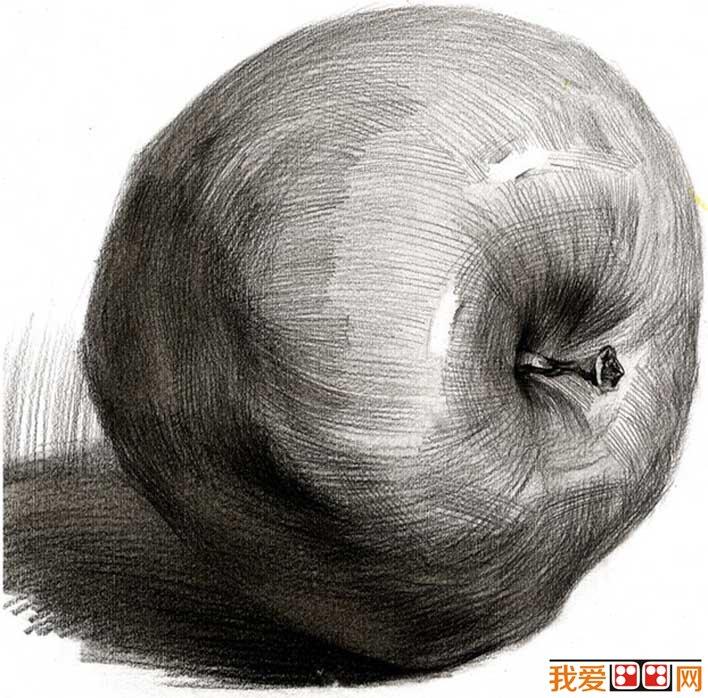 单个水果素描静物:5个不同角度的素描苹果图片(2)