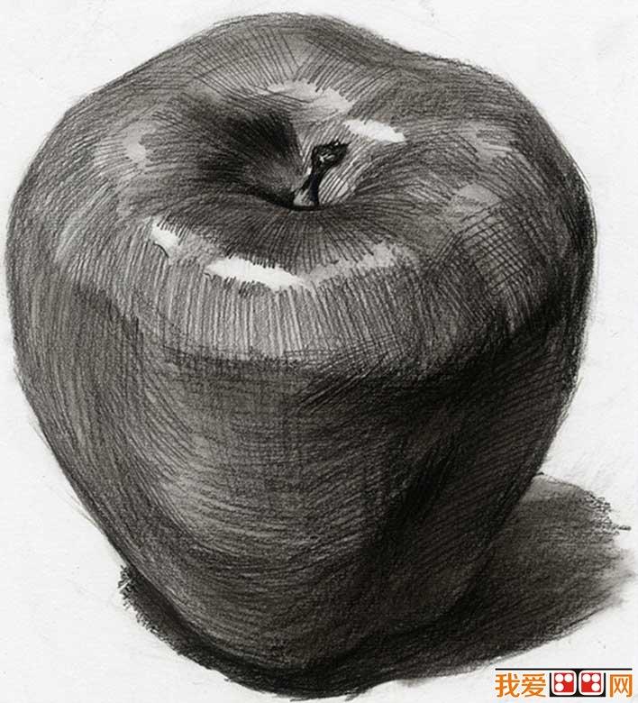 单个水果素描静物:5个不同角度的素描苹果图片(3)