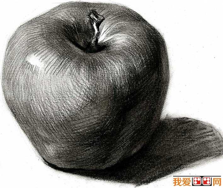 单个水果素描静物 5个不同角度的素描苹果图片 2图片