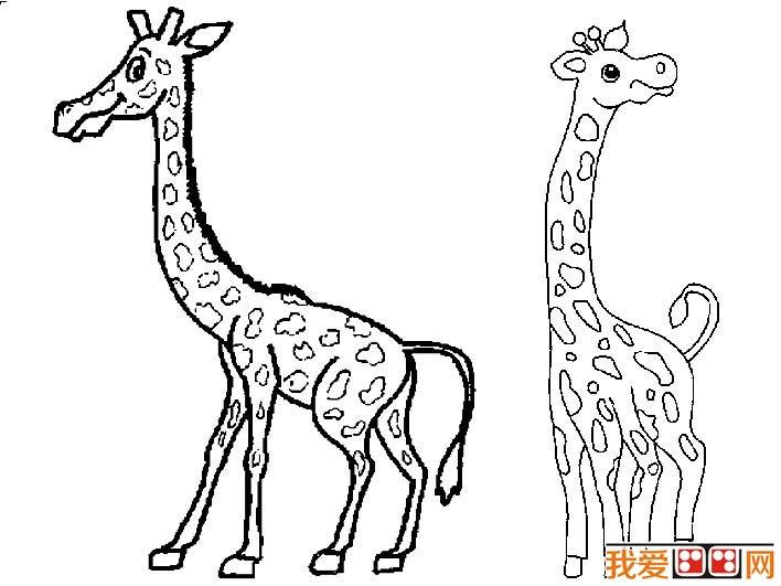 简笔画 长颈鹿/长颈鹿简笔画图片大全,有关长颈鹿的儿童简笔画图片