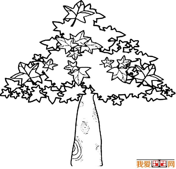 大树简笔画,各种各样的树简笔画图片(3)