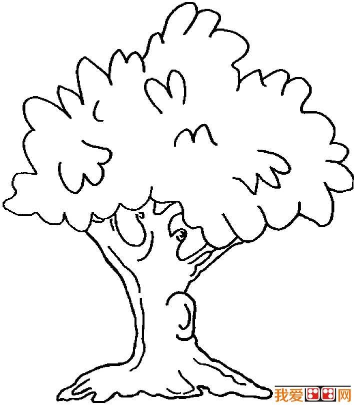 大树简笔画,各种各样的树简笔画图片(4)