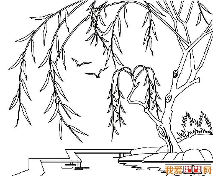 柳树简笔画,春天关于柳树的简笔画图片(三)-柳树简笔画,关于柳图片