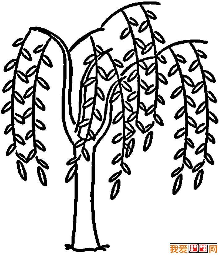 柳树简笔画,春天关于柳树的简笔画图片(五)-柳树简笔画,关于柳图片