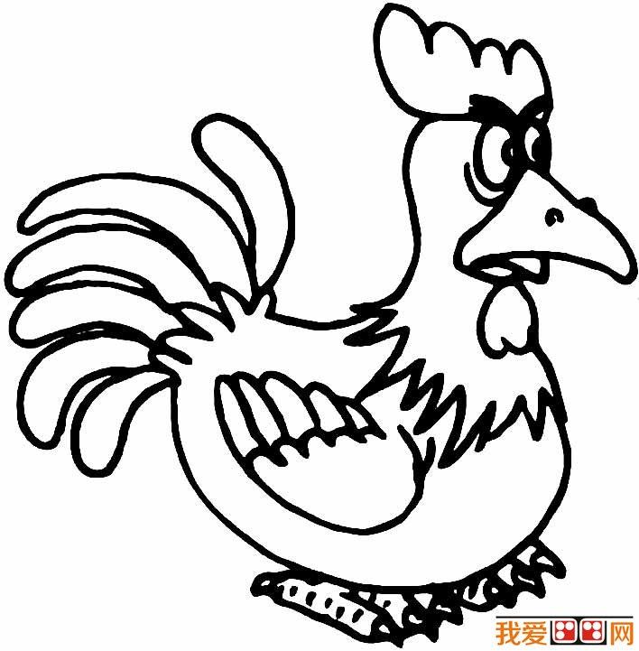 大公鸡简笔画图片 儿童画大公鸡图片(4)