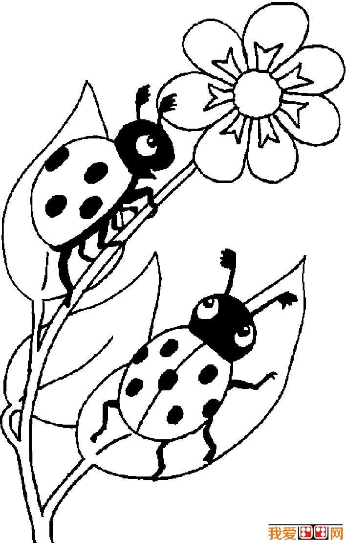 七星瓢虫简笔画图片大全 可爱的简笔画七星瓢虫图片(2
