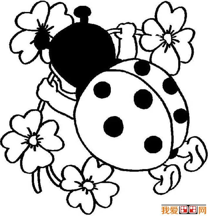 七星瓢虫简笔画图片大全 可爱的简笔画七星瓢虫图片(3)