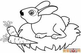 大公鸡儿童画 大公鸡简笔画油画棒填色作品12副 4