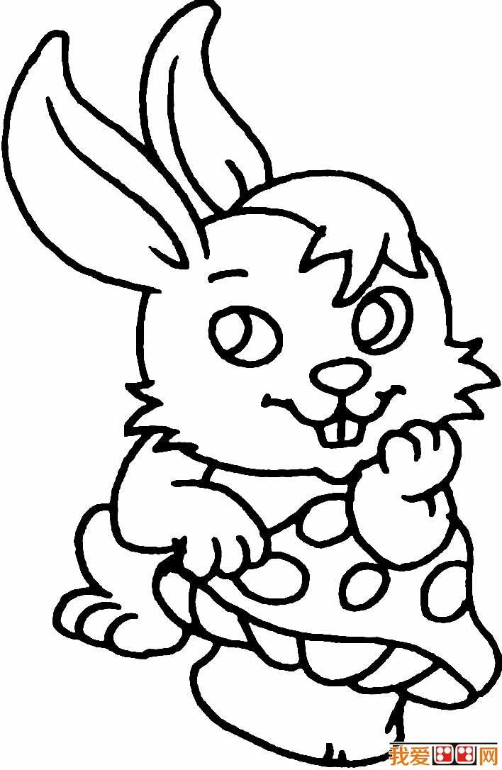 简笔画兔子图片大全,儿童简笔画兔子卡通图片(9)