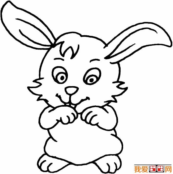 简笔画兔子图片大全(19)儿童简笔画兔子卡通图片