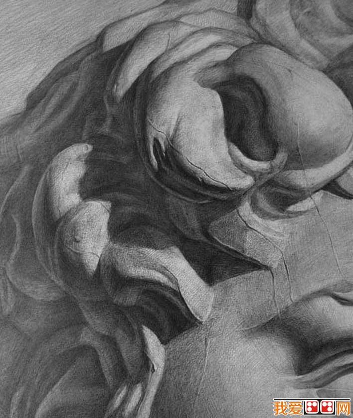 强烈质感写实素描静物和石膏像大卫优秀作品欣赏(3)