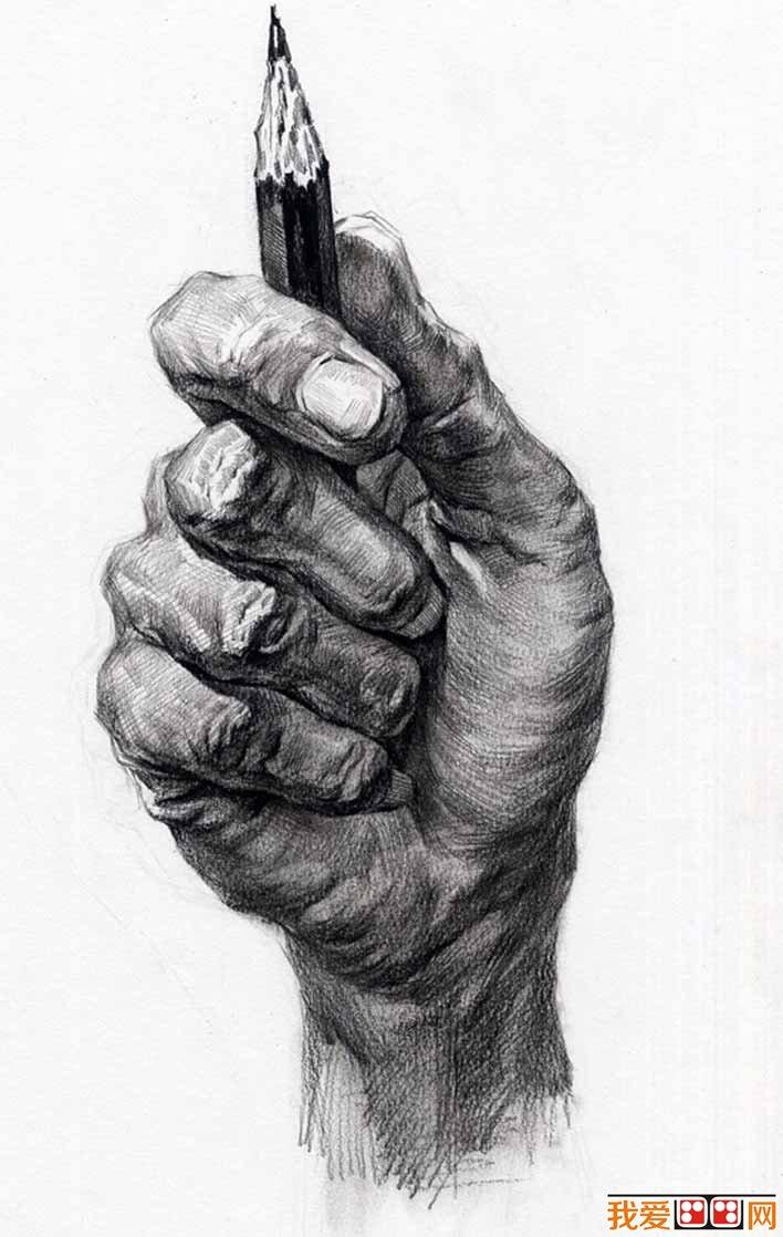 手部的素描图片大全25P,各种各样的素描手势的画法图片 3