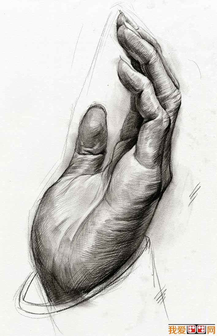 手部的素描图片大全25P,各种各样的素描手势的画法图片 4