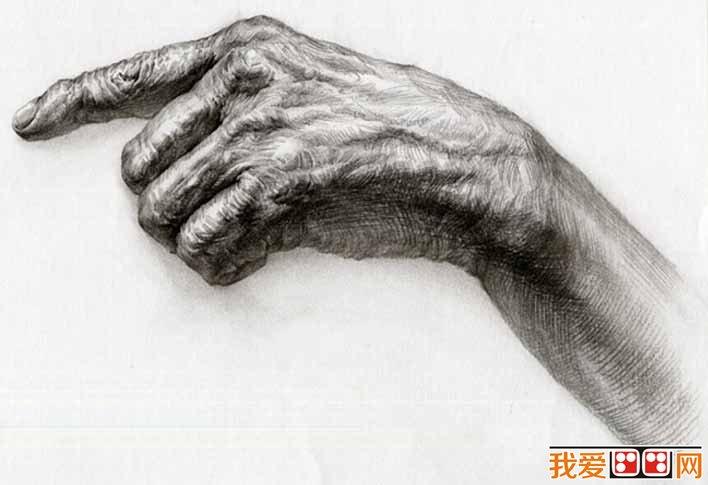 手部的素描图片大全25P,各种各样的素描手势的画法图片 5