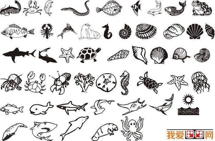 海洋动物和海洋生物简笔画图片大全