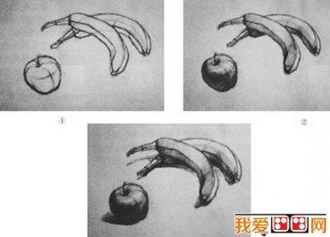 静物素描写生教程图片展示