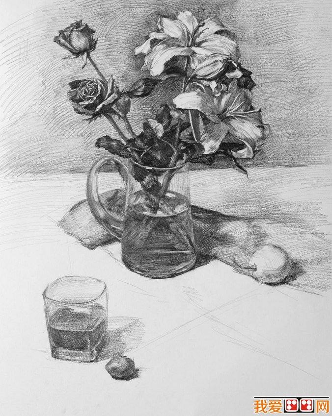 素描教程 花卉静物素描步骤与详细教程 3图片