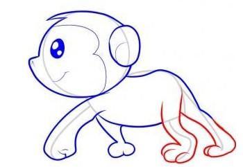 绘画猴子的躯体,这时候一个完整的猴子出现啦-怎么画猴子 猴子简笔