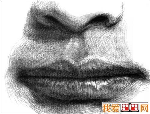 五官是人物头像的重点表现处,也是素描人像是否传神的重点.