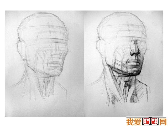 素描教程:认识素描头像之头部基本比例