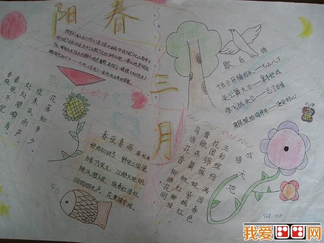 关于植树节手抄报的排版设计