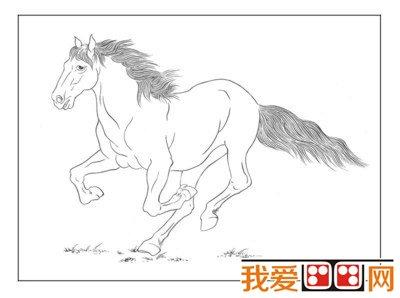 白描绘画骏马-最简洁的绘画表现形式 白描图片