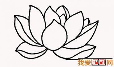 小学生简笔画:荷花简笔画教程