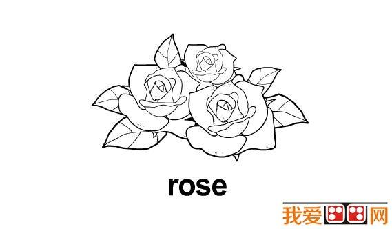 小学生学画画:玫瑰花简笔画教程