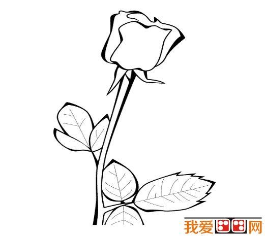 清晨玫瑰花开简笔画画法 怎么画清晨玫瑰花开 简笔画花朵 儿童