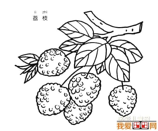 水果简笔画:荔枝简笔画教程_儿童画教程_学画画_我爱
