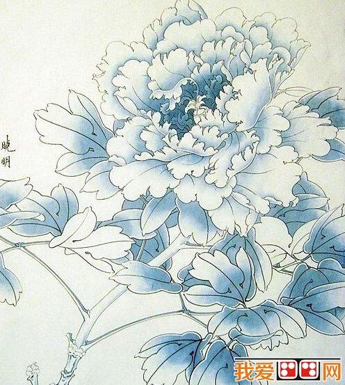 国画教程:牡丹工笔画教程