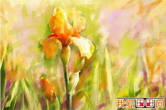 水粉画教程:水粉画花卉画法
