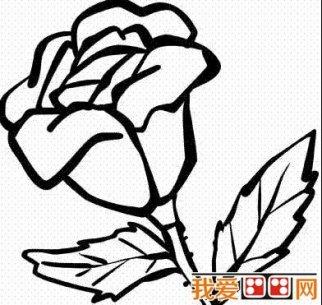 春天的景色儿童简笔画作品欣赏(6)