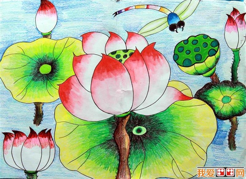 童画 夏日荷塘景色儿童蜡笔画欣赏