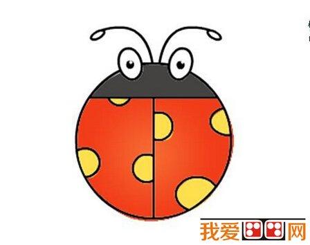 儿童画教程 简笔画 > 儿童简笔画:七星瓢虫分解教程      四,在圆圆的