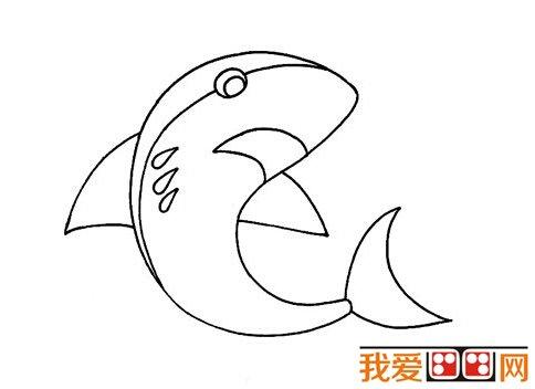 大海里面可不止有大鲨鱼哦,还有许多其他的海洋动物呢.